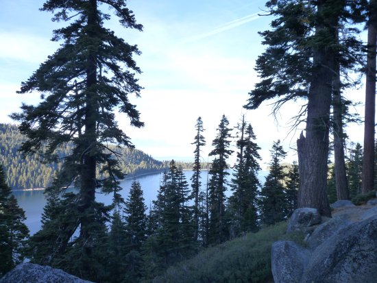 Emerald Bay State Park: Bay through the trees