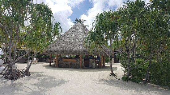 Tetiaroa, French Polynesia: Bar