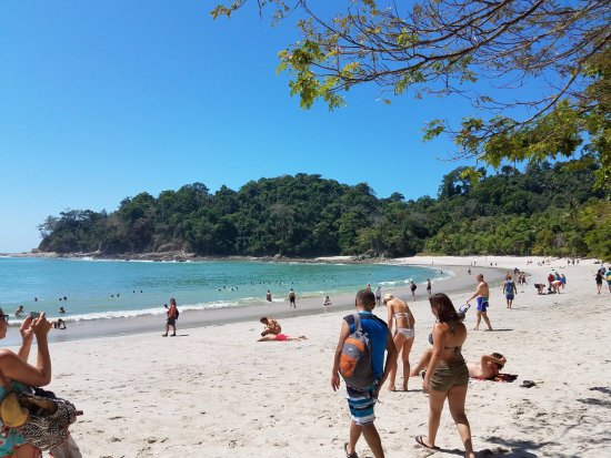 Hotel Costa Verde Manuel Antonio Beach Is In The National Park