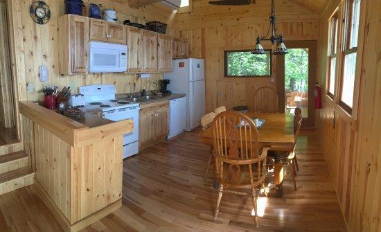Cook, MN: Birches Cabin