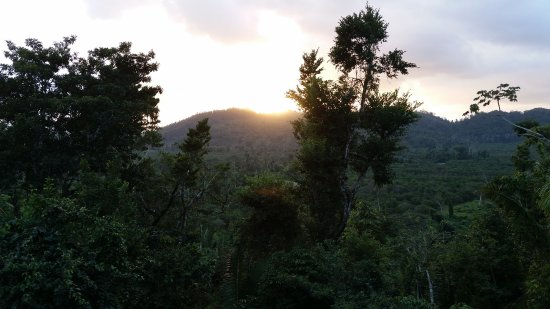 Ian Anderson's Caves Branch Jungle Lodge: View of hills from our room at sunset