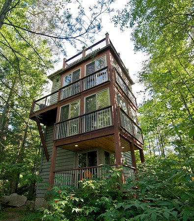 "Cook, มินนิโซตา: Dreamcatcher ""Treehouse"" Cabin"