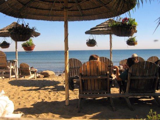 Paradise Cove Review Of Beach Cafe Malibu Ca Tripadvisor