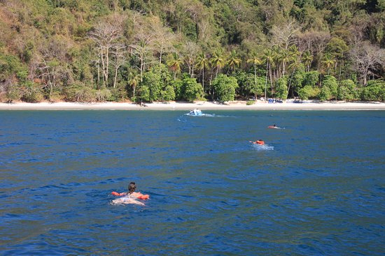 Herradura, Costa Rica: swim in or board our panga for transportation to the cookout