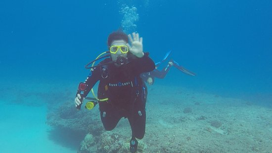 Island Divers Hawaii : photo0.jpg