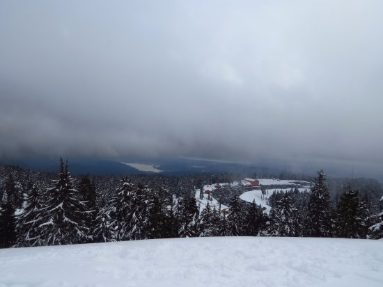 Mt Seymour: View from Dinky Peak