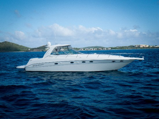 Blue Tang Yacht Private Charters