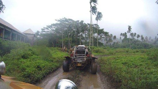 Muri, Cook Islands: Buggies