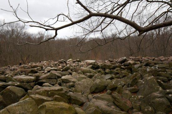 Upper Black Eddy, PA: rock field first seen on entering park