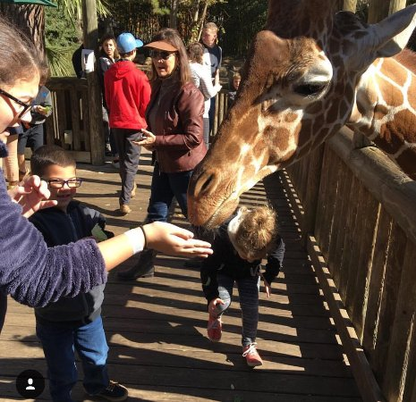 Riverbanks Zoo and Botanical Garden: photo3.jpg