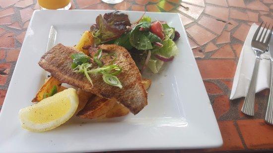 Russell, Nueva Zelanda: fish of the day