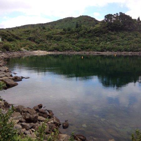Wairoa, Nueva Zelanda: photo0.jpg