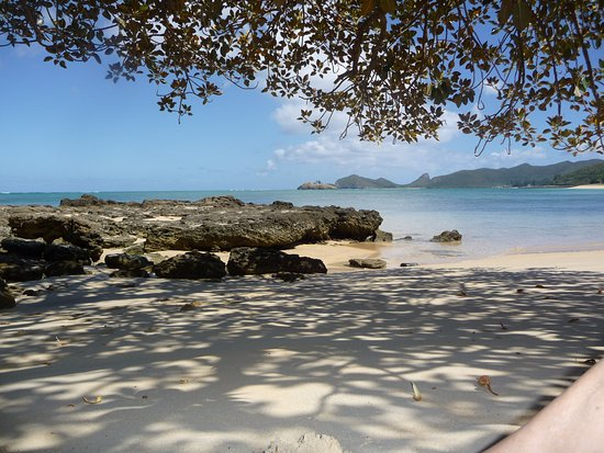 Pinetrees Lodge: One of the stunning beaches