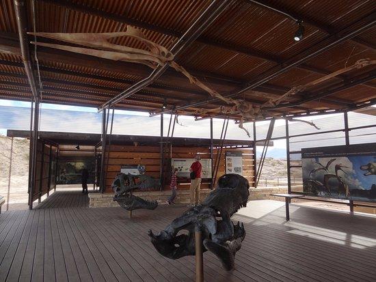 Alpine, Teksas: the new dinosaur fossil exhibit opened in January