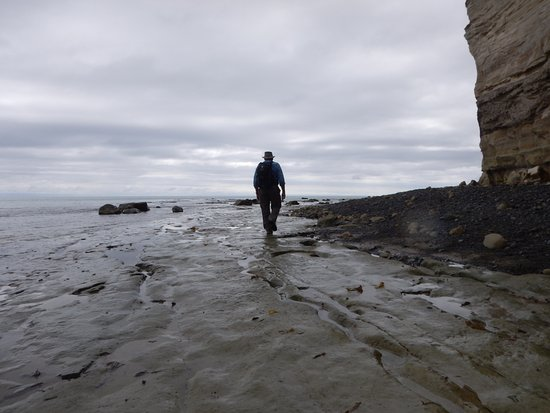 Hawke's Bay Region, New Zealand: beach walk to Cape Kidnappers