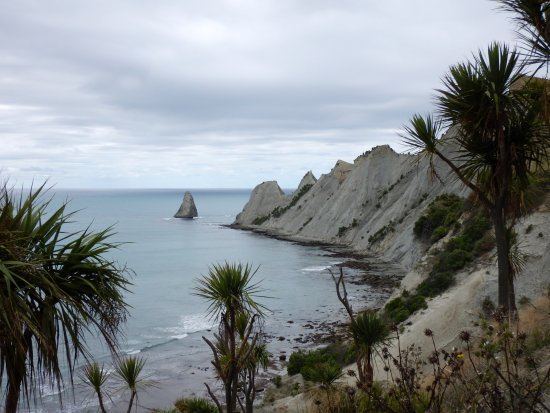 Hawke's Bay Region, New Zealand: Cape Kidnappers walking up to Gannet colonies