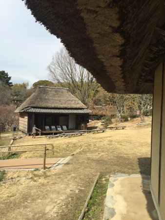 Toyonaka, Japan: photo5.jpg