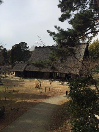 Toyonaka, Japan: photo8.jpg