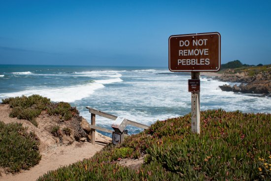 Pescadero, CA: Take only photos, leave only footsteps! True, even at the beach.