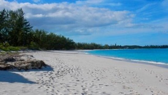 Paradise Bay Bahamas: photo2.jpg