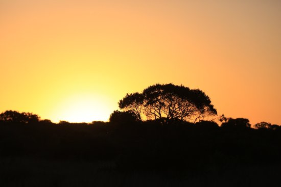 Kenton-on-Sea, South Africa: Game Drives with Ranger Scott