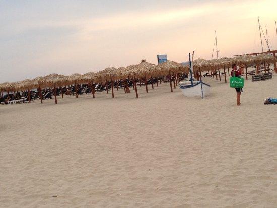 Photo of Dolce Vita Sunny Beach