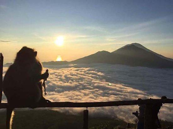 Ketut Rhonda Tour: Dear my guests ,it's amazing Batur Sunrise at kintamani bali