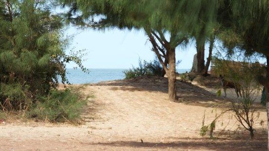 Foto de Jinack Island