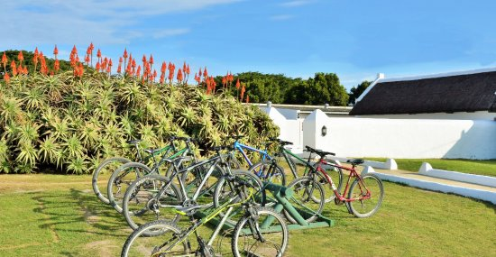 De Hoop Collection Nature Reserve : Bicycle hire available