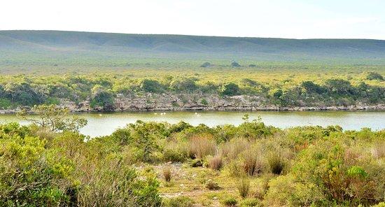 De Hoop Collection Nature Reserve : Views
