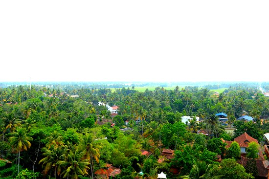 Pagoda Resorts Alleppey Picture