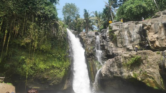 Aditya Bali Tour