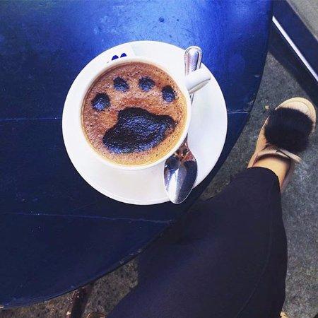 Photo of Cafe Cafe Gitane at 242 Mott St, New York, NY 10012, United States
