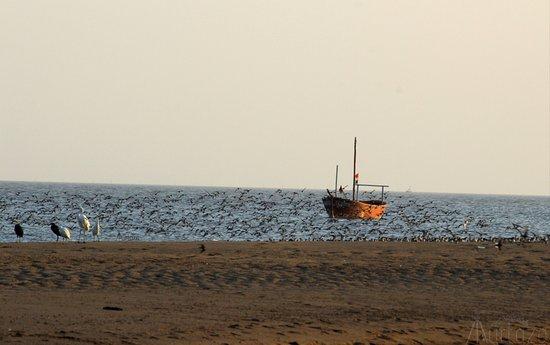 Kuda Beach