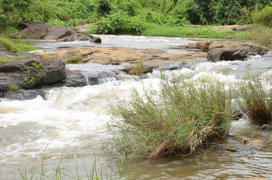 Ernakulam, Inde : A joy to see the flowing water
