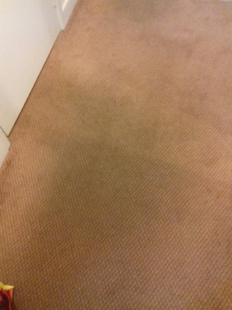 Much Wenlock, UK: carpet in room
