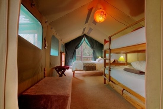Teniqua Treetops: Inside a tented tree house bedroom, Knysna, Garden Route