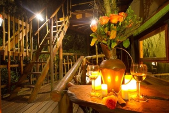 Teniqua Treetops: The self-catering tree house deck, Knysna, Garden Route