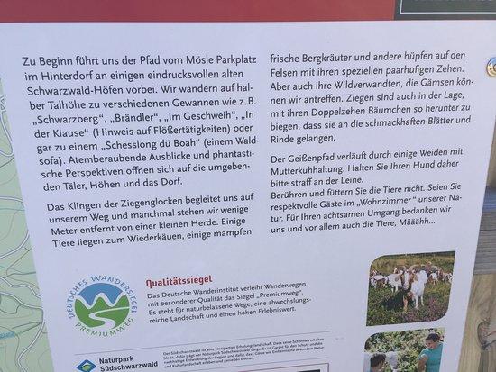 Sankt Blasien, Germany: Schöne Wanderwege, die Wasserfälle und die gemütlichen Restaurants!