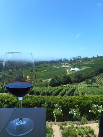 Constantia, Sudáfrica: This view works, for sure!