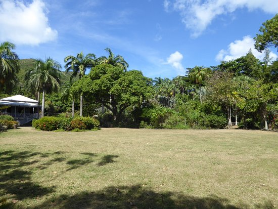 J.R. O'Neal Botanic Gardens: Lawn surrounded by flowering shrubs and trees
