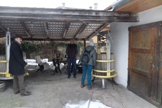 Erdobenye, Hungria: No Machines! Traditional wine making
