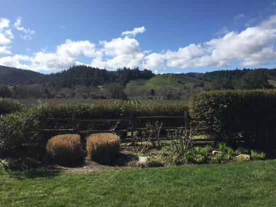 Dutcher Crossing Winery : photo2.jpg