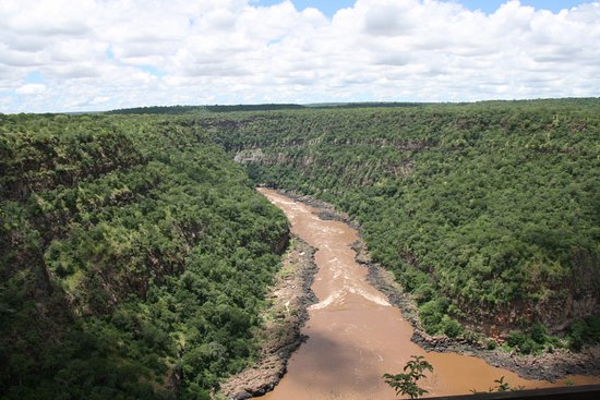 Taita Falcon Lodge: Gorge view