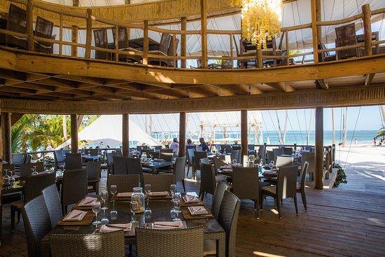 Jellyfish Beach Restaurant Punta Cana Reviews Phone Number Photos Tripadvisor