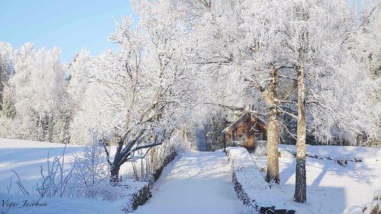 Vestre Toten Municipality, Noruega: Stenberg - Vinter