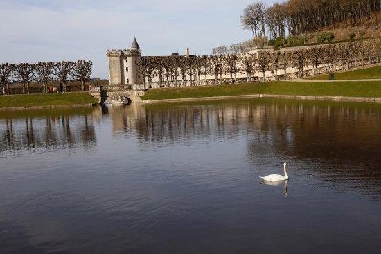 写真Château de Villandry枚