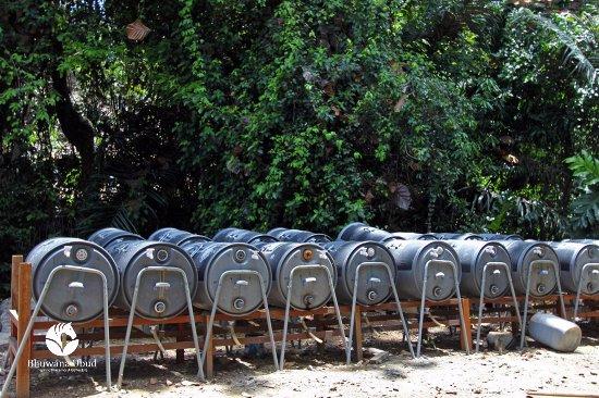 Bhuwana Ubud Hotel : Natural Waste Management