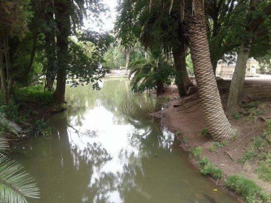 Paseo del Bosque: lago