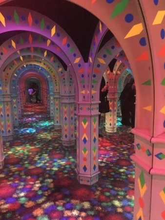 Amazing Mirror Maze Bloomington Mn Top Tips Before You